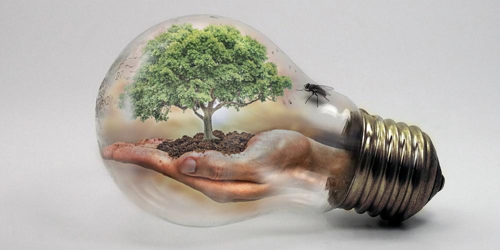 ekologia energetyczna